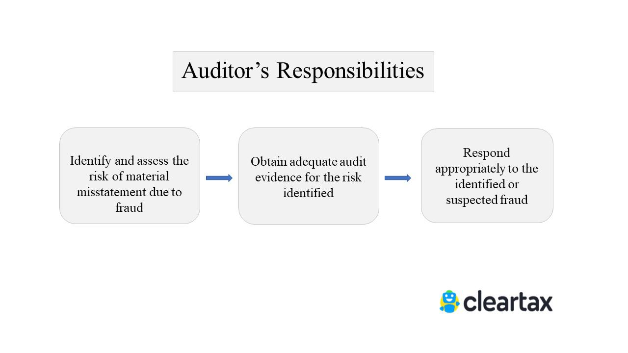 The Auditor's Responsibility