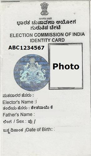 Voter ID Sample