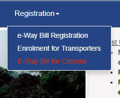 Generation of E-way bill by end-consumer