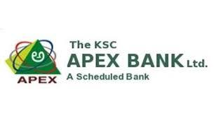 The Karanataka State Cooperative Apex Bank  logo