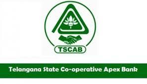 Telangana State Coop Apex Bank logo